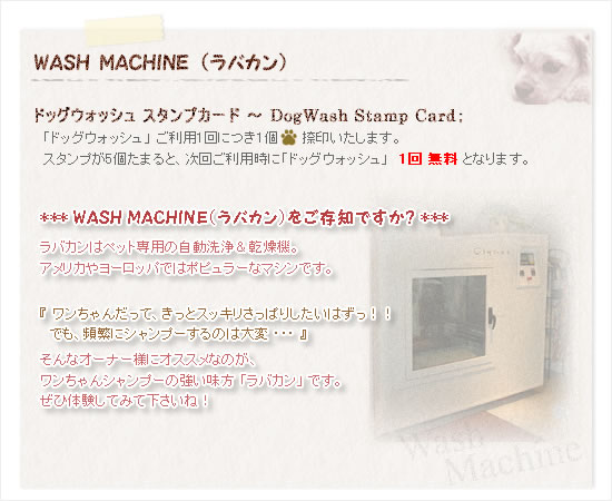 WASH MACHINE(ラバカン)
